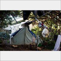 Tents 900